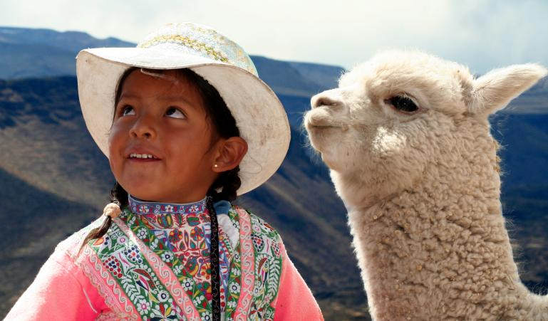 Alpacas are part of our communities